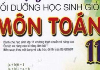 Đề thi học sinh giỏi toán 11 cấp trường