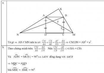 Bài tập chuyên đề tam giác đồng dạng bồi dưỡng hsg lớp 8
